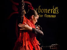 the best things to do in Madrid Flamenco show